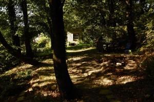 """Stage """"Nature et sculpture papier et vidéo"""